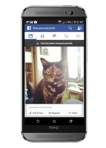 facebook_storing