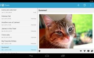 wordpress-app-screen
