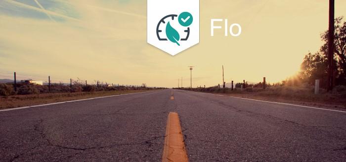 Hier wonen de beste automobilisten volgens de Flo-app