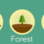 Forest: onderdruk je telefoonverslaving en plant een bos