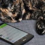 LG G4: 26 handige tips en trucs