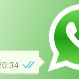 WhatsApp vinkjes header
