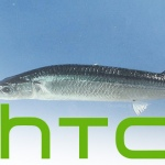 HTC Sailfish: specificaties van nieuwe Nexus-smartphone opgedoken