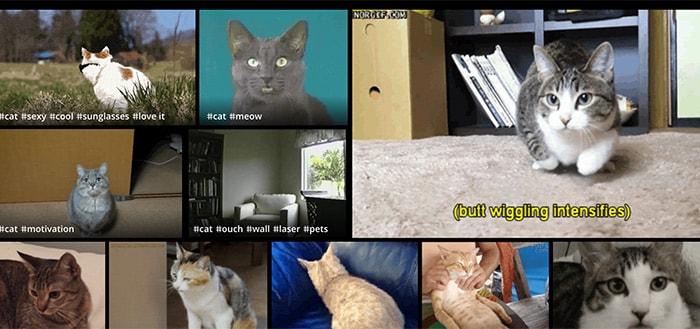 GIF Camera: maak je eigen geanimeerde gifjes