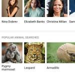 Bing afbeeldingen zoeken