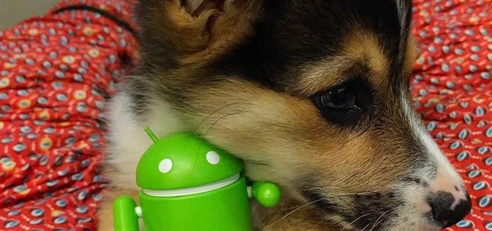 Google Voice Access: je Android smartphone besturen met je stem (+ APK)