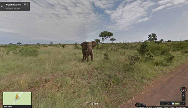Google Street View safari