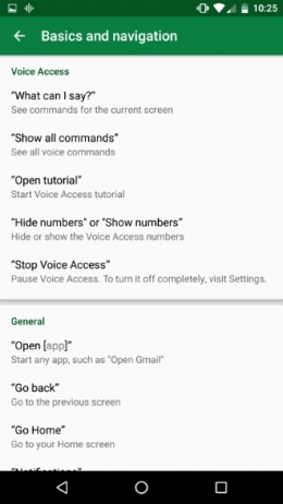 Google Voice Access