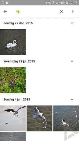 Google Foto's emoji