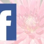 Facebook video's worden automatisch afgespeeld met geluid, zo los je het op