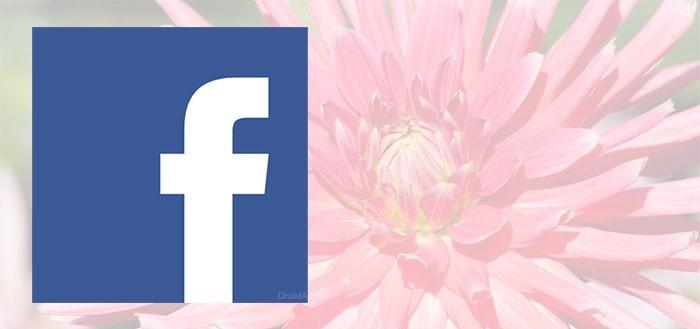 'Facebook komt met bloemen-emoji om dankbaarheid te uiten'