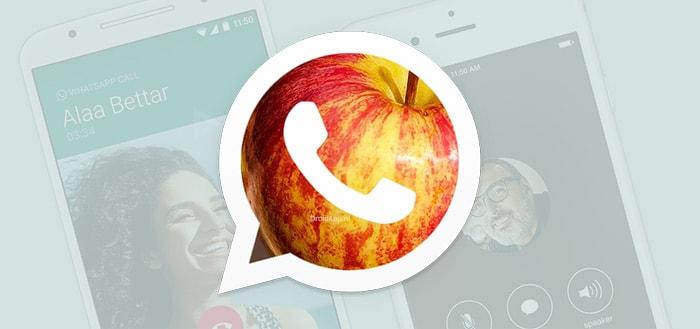 WhatsApp-ontwikkelaars plaatsen beledigingen aan Apple in broncode