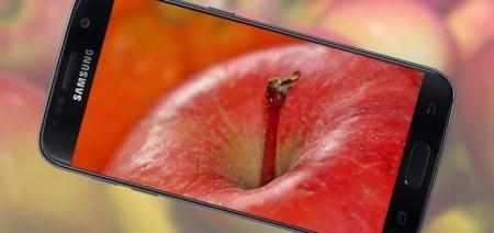 Froenten app geeft je alle informatie over groenten, fruit en vruchten