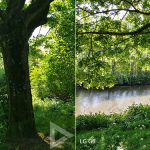 Galaxy S8 LG G6 fotovergelijking
