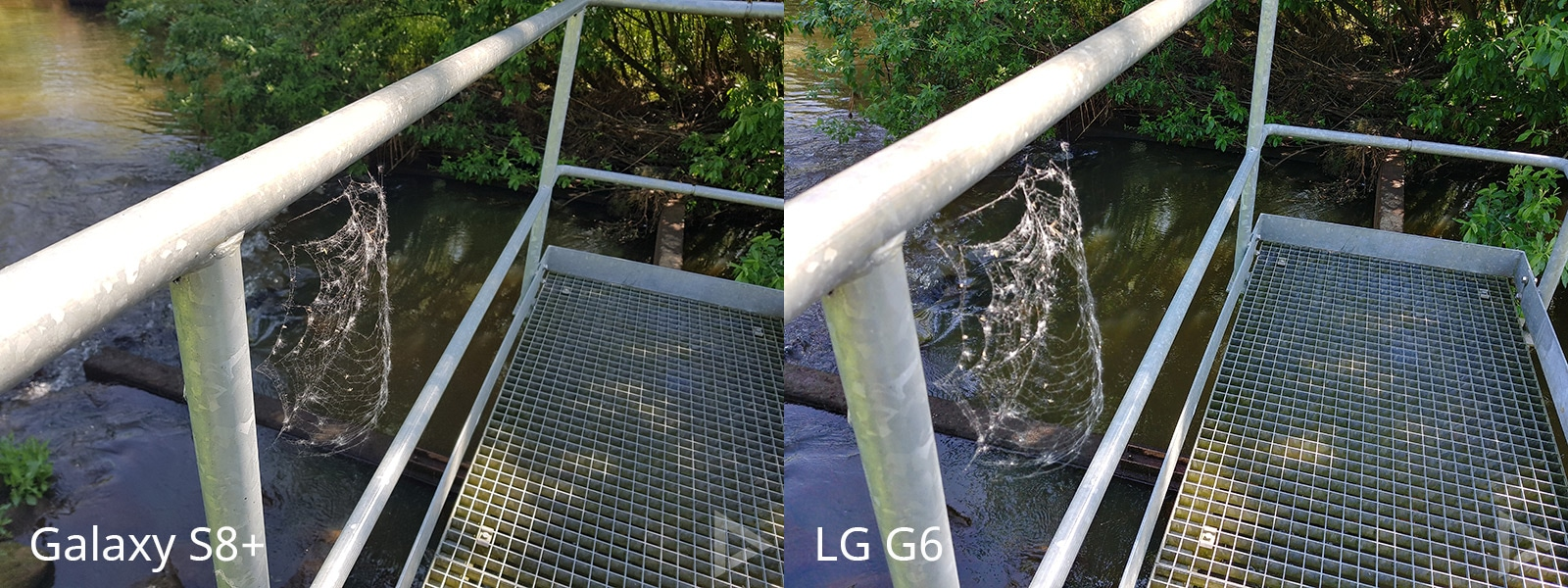 camera LG G6 vs Galaxy S8