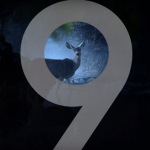Vier nieuwe promo-video's verschenen van Samsung Galaxy S9