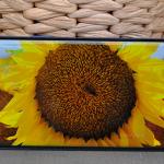 Samsung Galaxy S9/S9+ review: de smartphone waar je 'u' tegen zegt