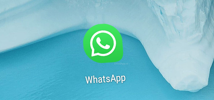 'WhatsApp komt dit jaar met eigen cryptomunt voor de 'gewone' gebruiker'