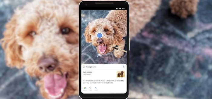 Google Lens als stand-alone app beschikbaar via Play Store