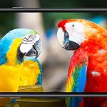 Samsung legt Galaxy J4+ voor 189 euro in Nederlandse winkels