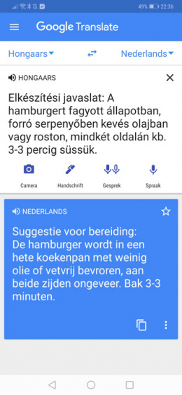 Google Translate hongaars