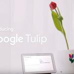 Google Tulip gepresenteerd: praten met je tulpen