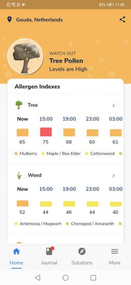 Pollen Wise