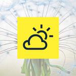 WeatherPro 5.4: update brengt eindelijk flexibele widget terug