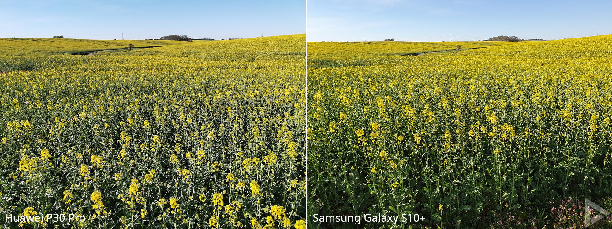 Fotovergelijking Huawei P30 Pro - Samsung Galaxy S10 10