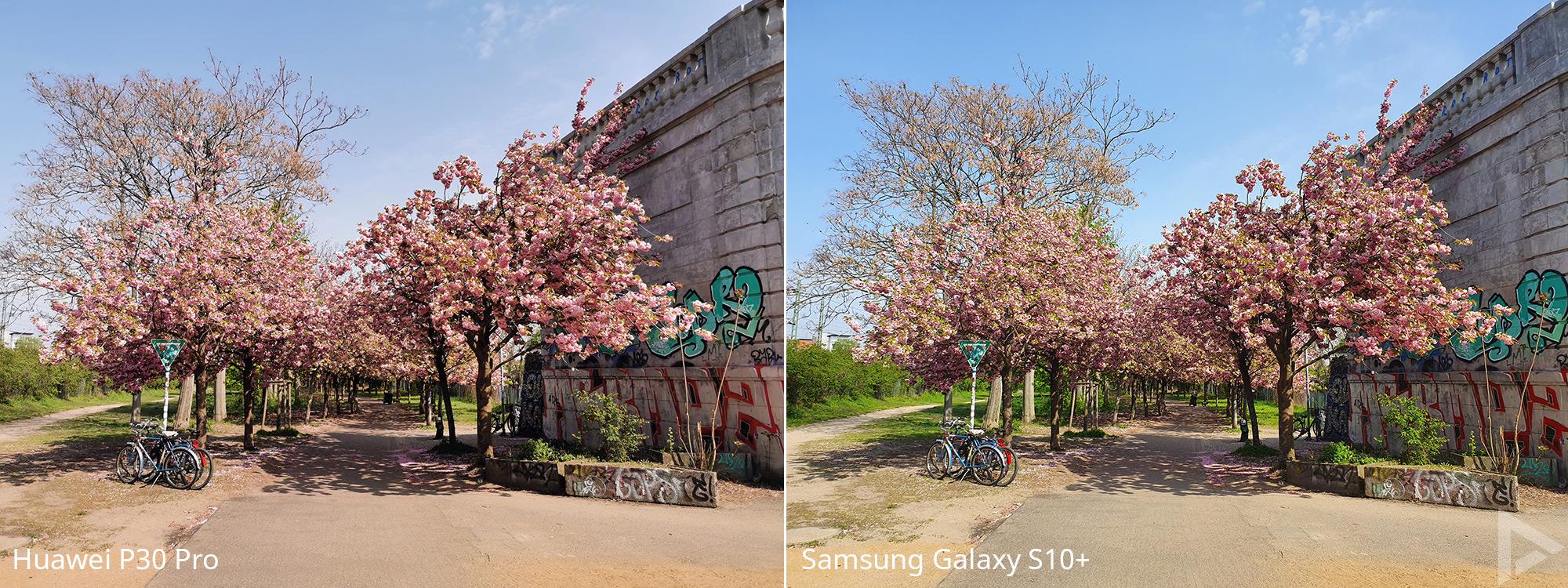 camera vergelijking Huawei P30 Pro - Samsung Galaxy S10 4