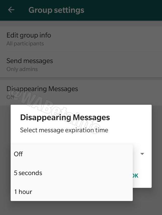 WhatsApp automatisch berichten verwijderen
