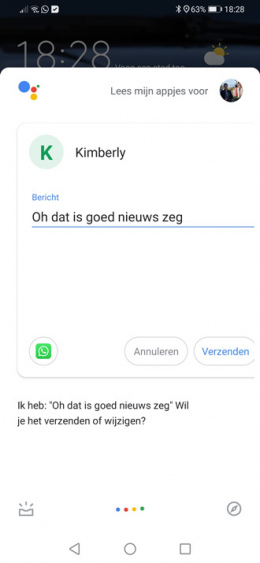 Google Assistent WhatsApp oplezen
