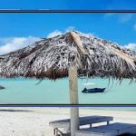 Samsung brengt Galaxy M31 met 6000 mAh accu voor €279 naar Nederland