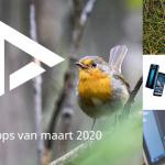 De 5 beste apps van maart 2020 (+ het belangrijkste nieuws)