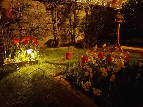 OnePlus 8 Pro nachtfoto