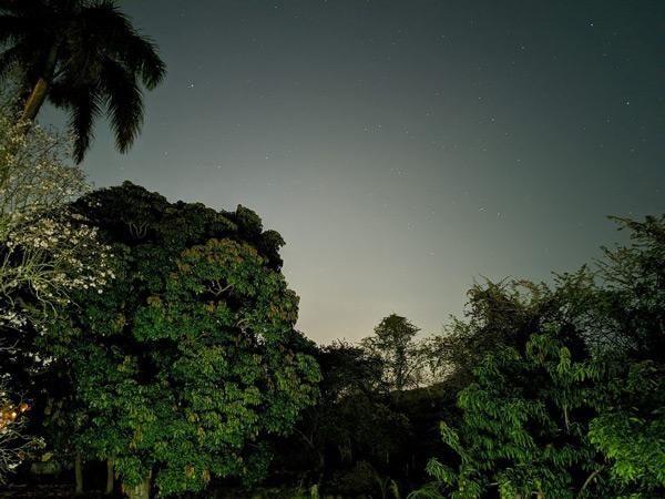 Pixel 4a camera nacht