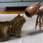 Google voegt nog eens 50 dieren toe aan AR Animals: deze plaats je in je huiskamer