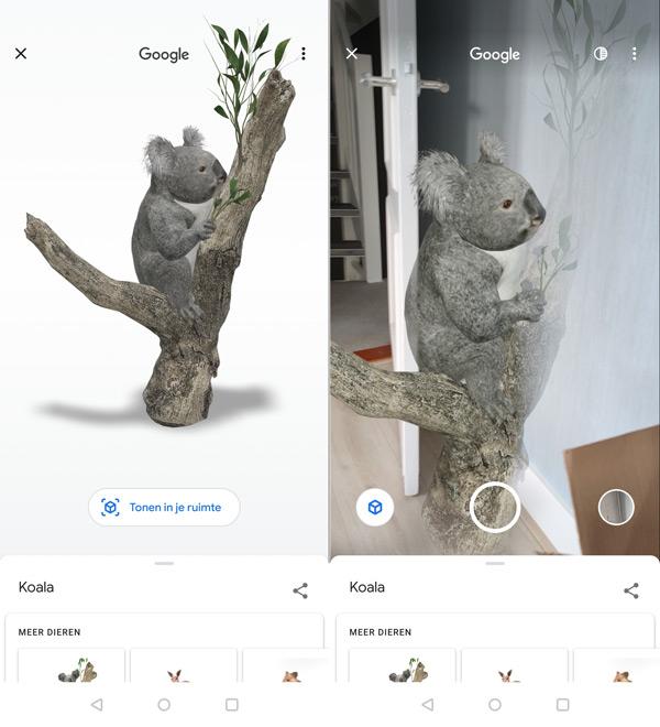 Google AR dieren australië