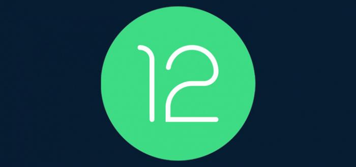 Google brengt tussentijdse Android 12-update uit: Developer Preview 1.1