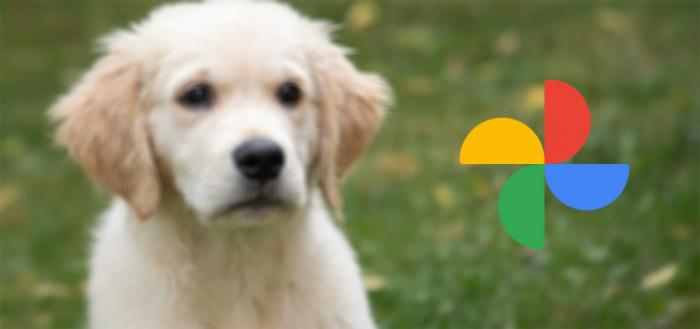 Google Foto's krijgt sterk verbeterde zoekfunctie: zo gaat 'ie werken